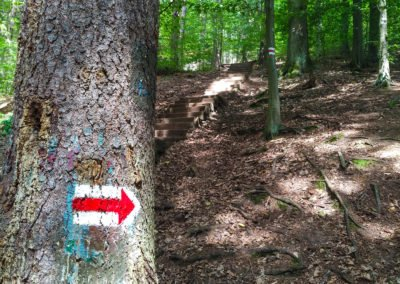 Trasa XXL – Ultra trail Českým rájem