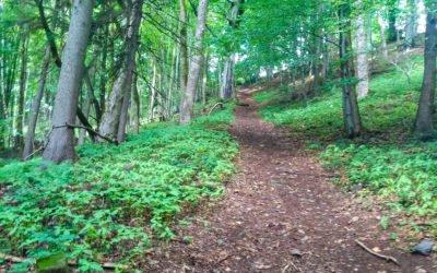 Vrchařské prémie Trail – Sportigo Challenge